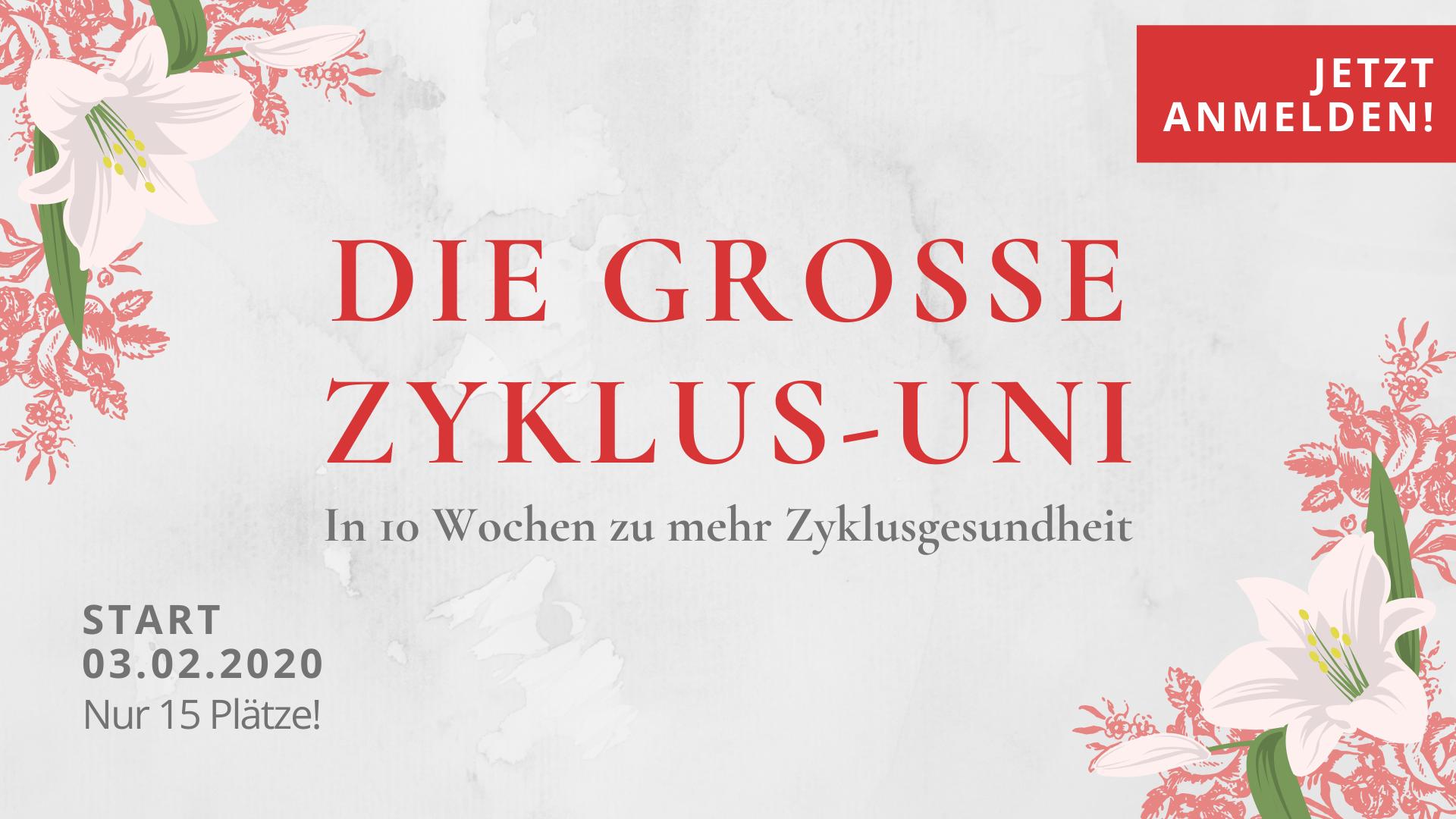 Fraulichkeit Anne Lippold Große Zyklus-Uni Zyklusgesundheit Selbstliebe Menstruationsbeschwerden Regelschmerzen Coaching Programm