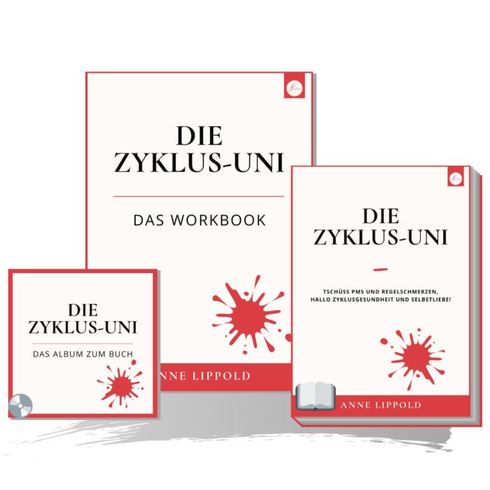 Fraulichkeit Zyklus-Uni Buch Workbook Album PMS und Regelschmerzen ade Zyklusgesundheit